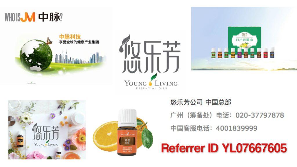 YLChina-Referrer-ID